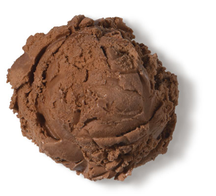 Chocolate Premium Ice Cream