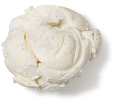 Vanilla Bean Premium Ice Cream